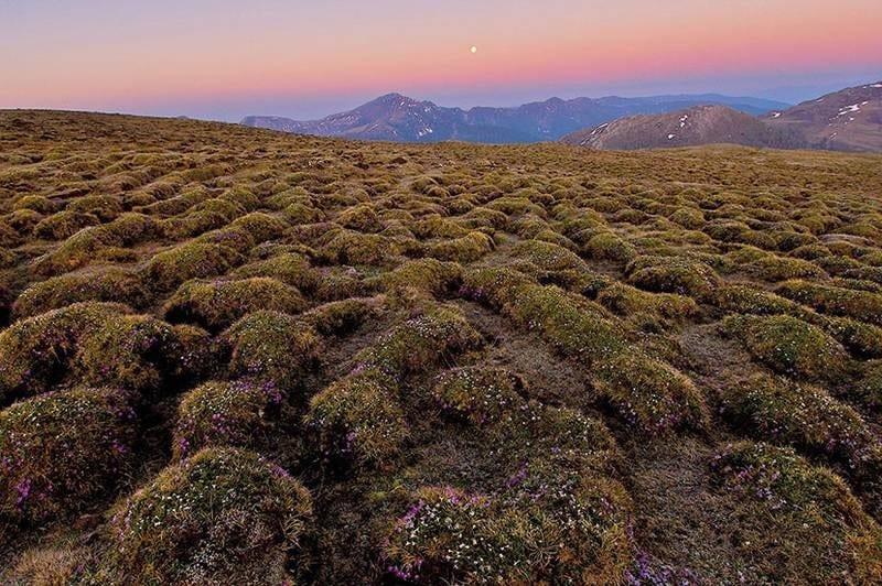 Aapamoor-Nockbergen-Sonderschutzgebiet