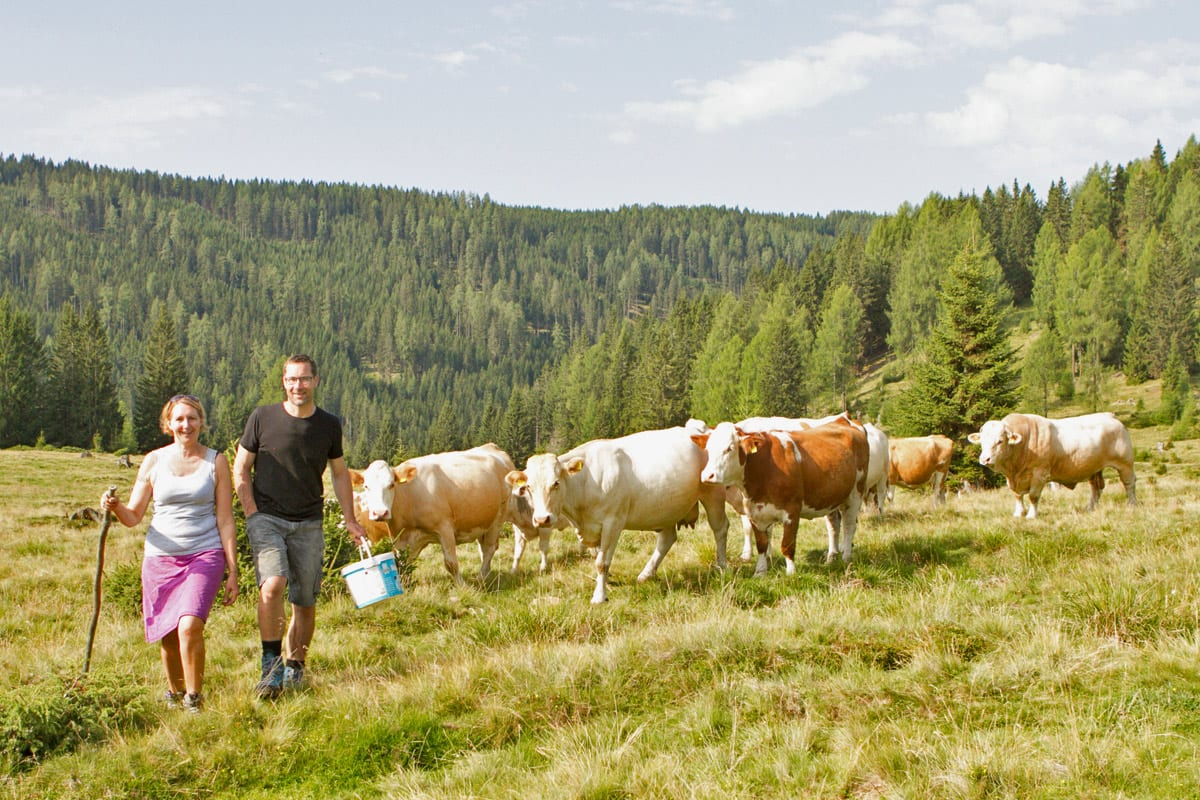 Nockfleisch-Almwirtschaft-Bergbauern-Regionale-Produkte-Rinder-Weidehaltung-6